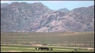 Попутчик - Путешествие на мотоцикле по Монголии