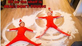 ELF ON THE SHELF IS REAL! DON'T TOUCH!