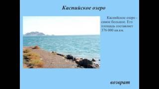 экосистема озера 3 класс презентация