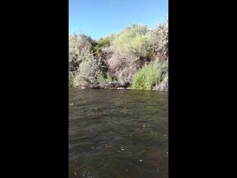 East Walker River Rosaschi Ranch NV