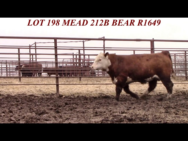 Mead Farms Lot 198