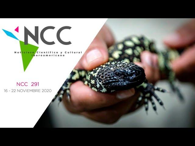 Noticiero Científico y Cultural Iberoamericano, emisión 291. 16 al 22 de Noviembre 2020
