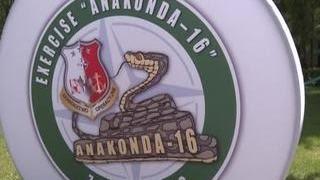 Грузины не поехали на учения НАТО из-за вспышки ветрянки в роте