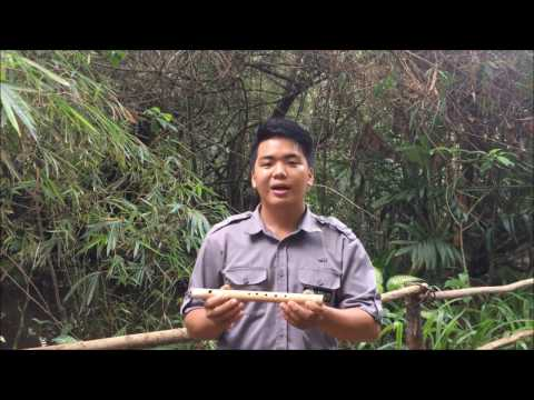 Traditional Instrument - Suling