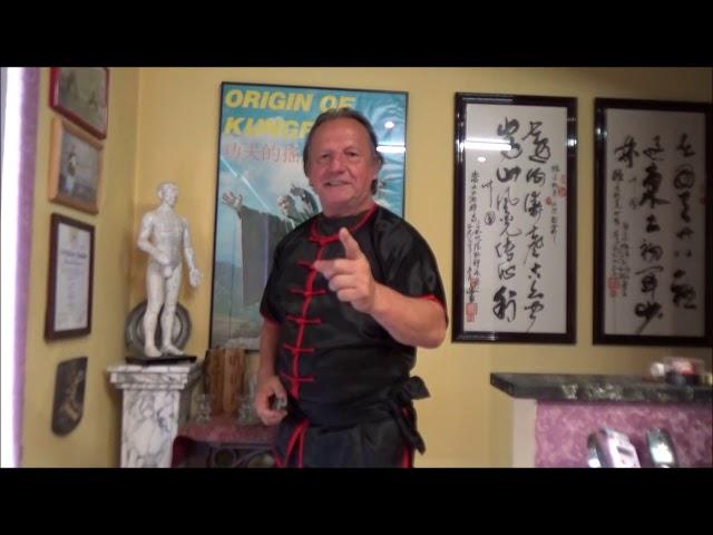 GM Walter Toch promote Workshop with Kyoshi Hubert Laenen 8e Dan Okinawate