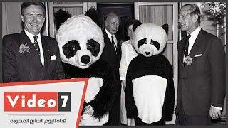"""أمير الدنمارك لـ""""فيديو7"""": """"الباندا"""" مهمة جدا وأطالب الحكومات بحمايتها"""