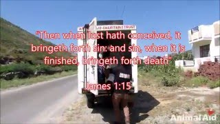 Video how sin kills the body & damns the soul