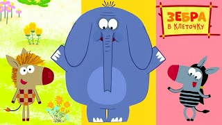 Зебра в клеточку все серии подряд на канале Союзмультфильм HD смотреть онлайн в хорошем качестве бесплатно - VIDEOOO