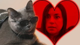 Valentine's Day With The Purrminator