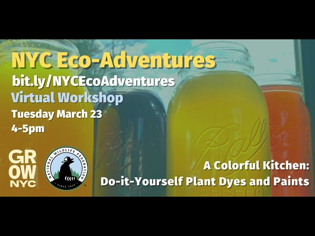 DIY Plant Dyes and Paints