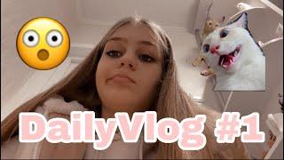 Daily vlog #1 | Am stat 4 ore in vama |Ne-am întors acasă ?