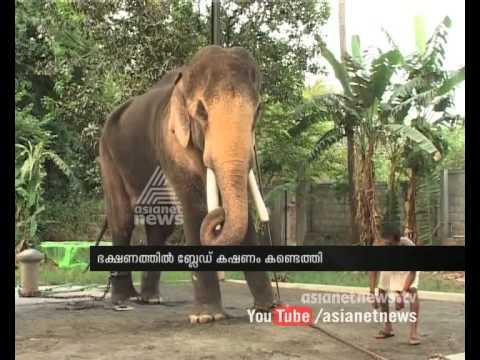 Thechikottukavu Ramachandran s food found pieces of blade| FIR
