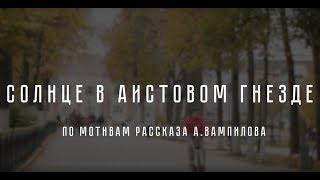 """Фильм """"Солнце в аистовом гнезде"""" (реж.Ирина Сергеева)"""
