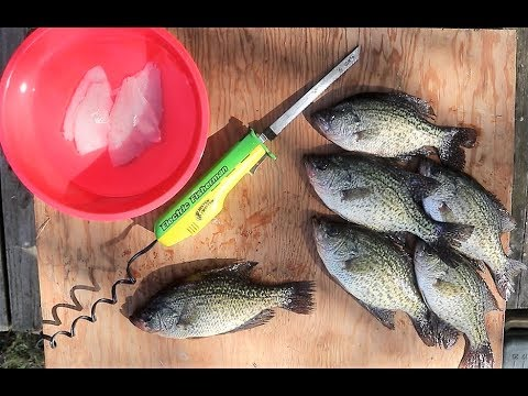 How To: The QUICKEST Way To Fillet CRAPPIE!