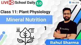 Class 11   Plant Physiology   Mineral Nutrition-1   Biology   Unacademy Class 11\u002612   Rahul Sharma