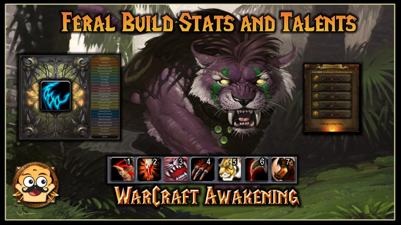 WoW Awakening Feral DPS Build - Stats and Talent Showcase