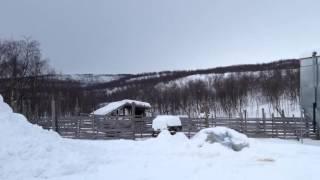 Lapland trip