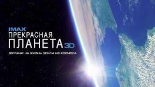 «Прекрасная планета 3D» — фильм IMAX в СИНЕМА ПАРК