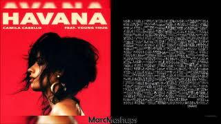 DJ Snake & Camila Cabello - Havana / Middle (Mashup)