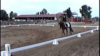 Meet the Flintstones at a Dressage show