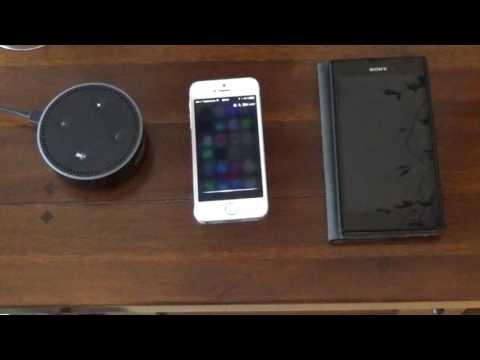Amazon Echo vs Apple Siri vs Google   Systemvergleich auf deutsch