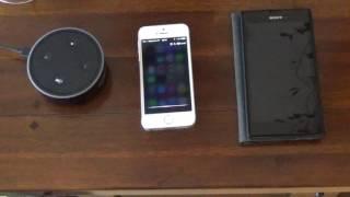Amazon Echo vs Apple Siri vs Google | Systemvergleich auf deutsch