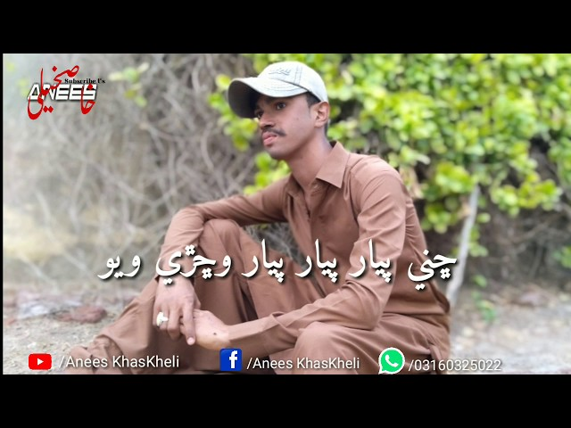 Najaf Ali Wichree Wayo Best Sindhi SonG || Sindhi SonG || BY Anees KhasKheli