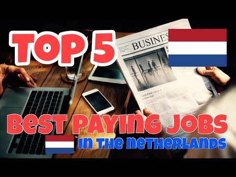 5 best paying jobs in The Netherlands!