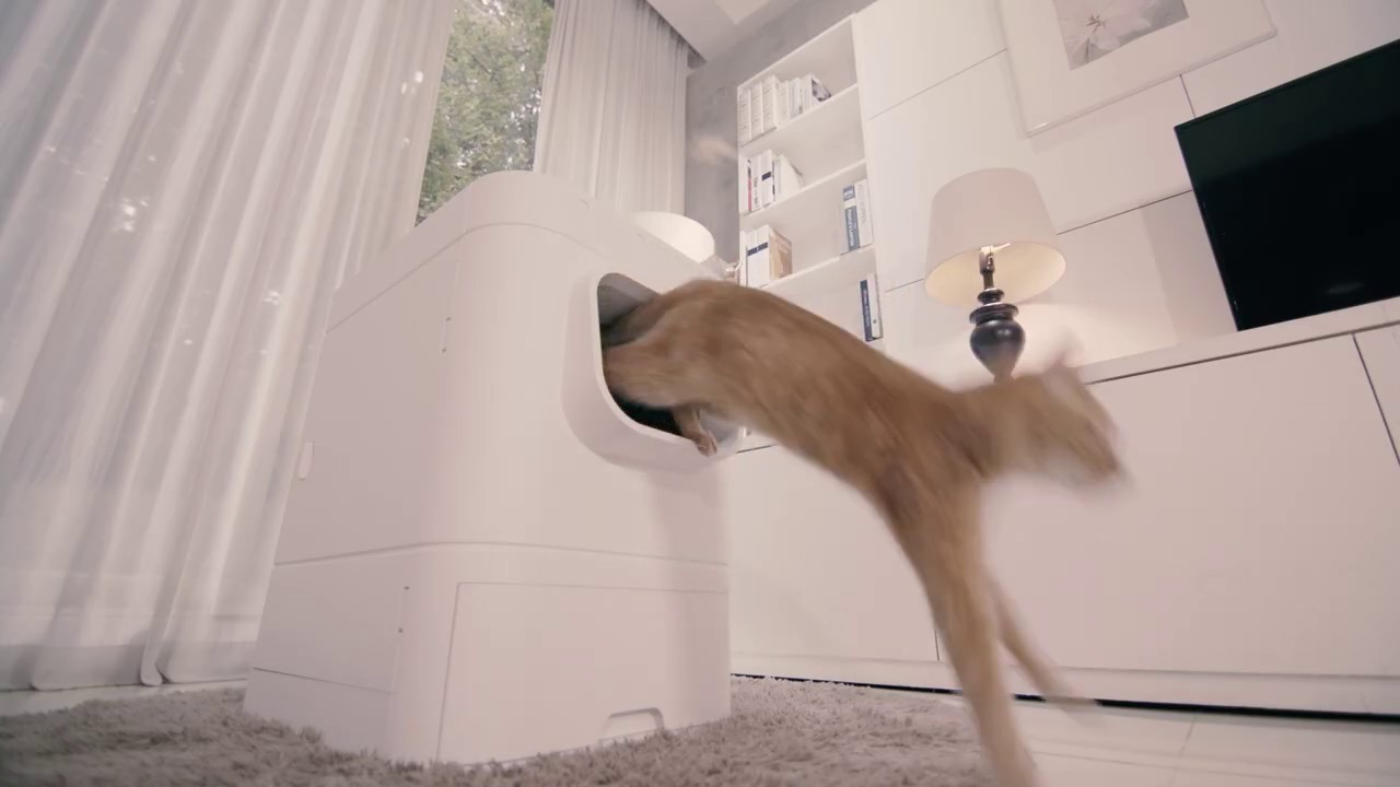 LavvieBot S is an IoT enabled, self-cleaning litter box for cats