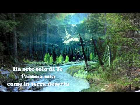 DALL'AURORA AL TRAMONTO (Balduzzi-Casucci)