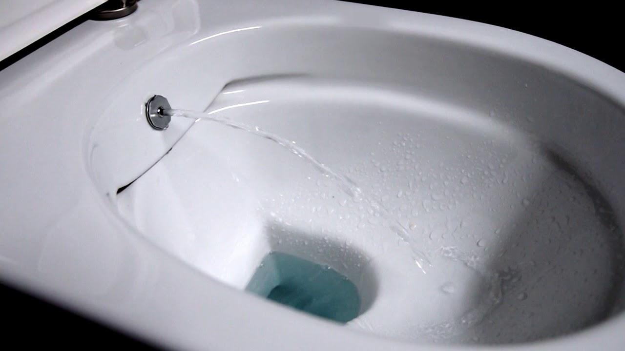 Dusch Wc Toilette Mit Bidetfunktion Taharet In Funktion Von Aqua