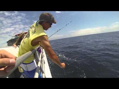Myrtle Beach Tours & Little River Fishing Fleets