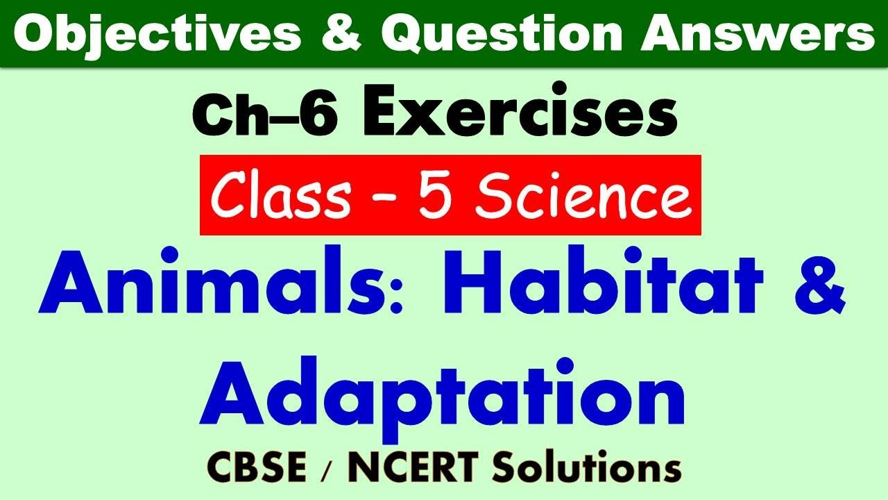 hight resolution of Animals : Habitat and Adaptation - Class : 5 Science    Exercises \u0026  Question Answers   CBSE / NCERT - YouTube