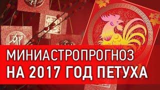 Астропрогноз 2017 - год Огненного Петуха. Каким знакам зодиака повезет больше? Приглашение Правдиной