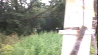 Пожар в Кирове(, 2016-08-13T16:10:22.000Z)