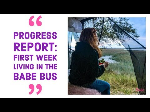 progress-report:-first-week-living-in-the-babe-bus
