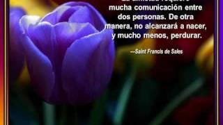 Amistad Verdadera - Presentaciones de Tommy's Window Español thumbnail