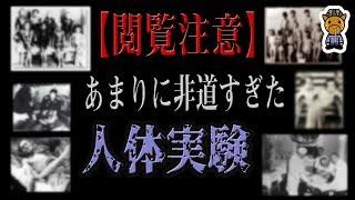 【内容にご注意ください】人体実験 thumbnail