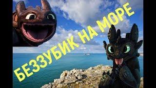 БЕЗЗУБИК путешествие на море Toothless trip to the sea / Видео