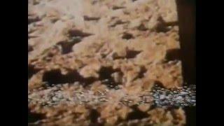 посадка на марс засекреченное старое видео