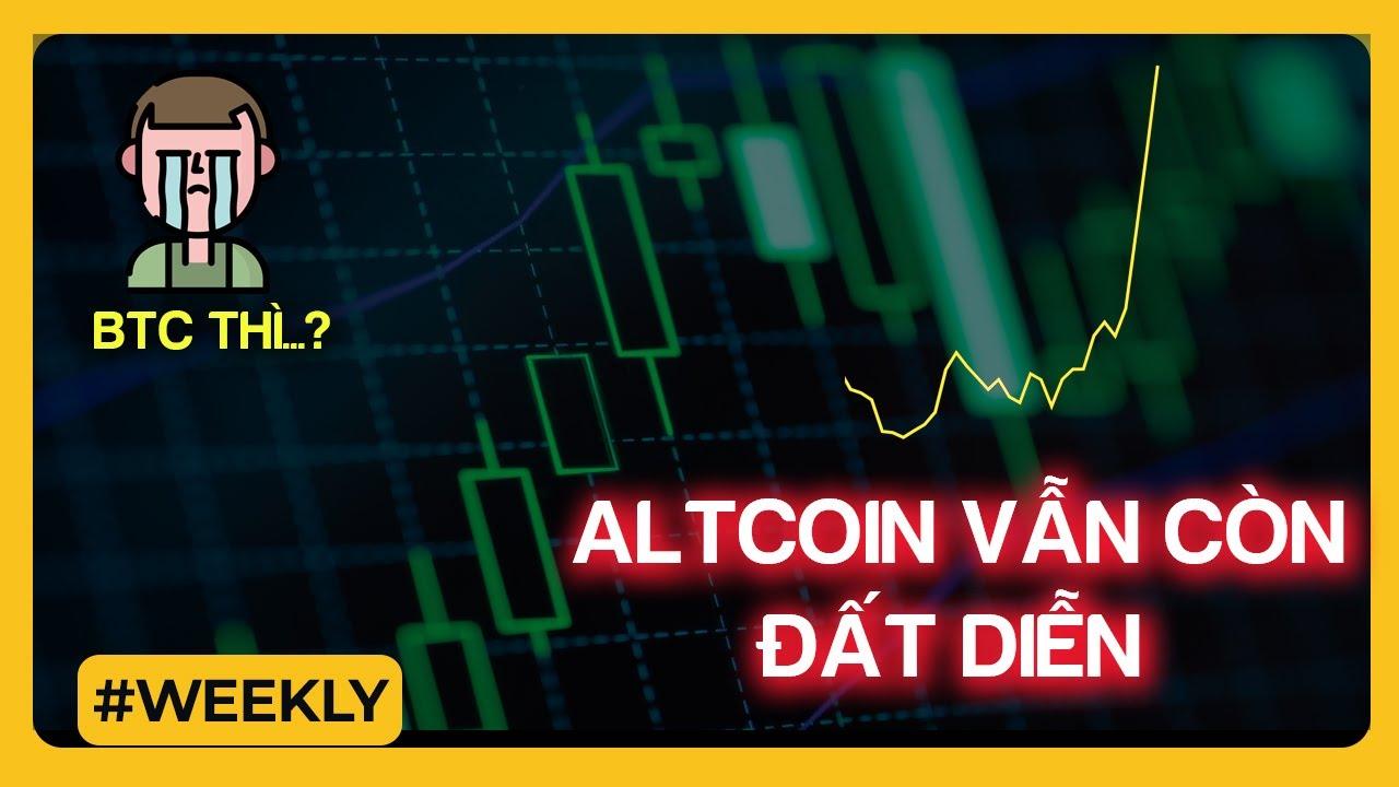 WEEK 24/1 - 30/1 | Altcoin Còn Đất Diễn… BTC Thì?