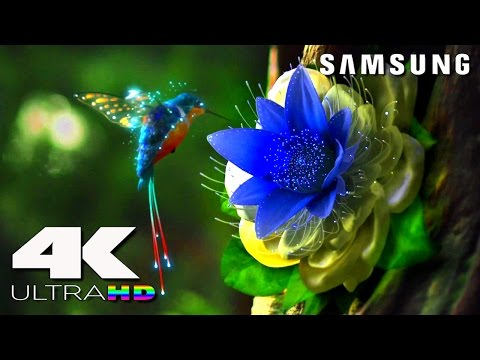 4K ULtra HD | SAMSUNG UHD Demo׃ LED TV