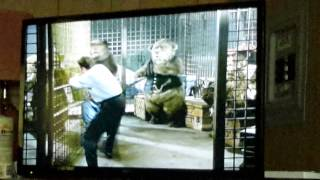 Video THE COUNTRY BEARS download MP3, 3GP, MP4, WEBM, AVI, FLV September 2017