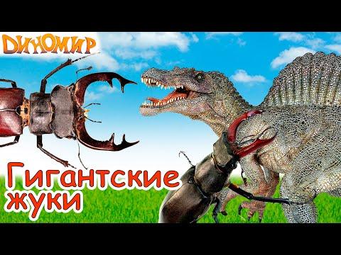 Динозавры Тиранозавр и Спинозавр против Гигантских жуков в долине динозавров. Диномир