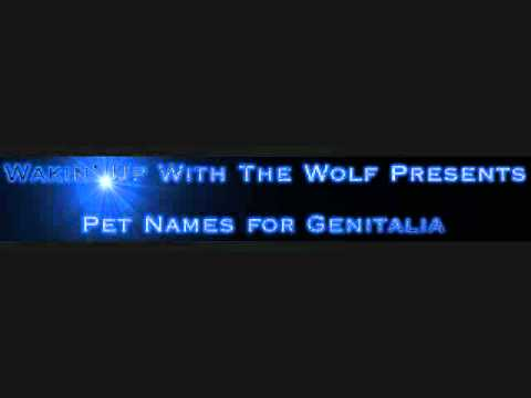 Pet Names for Genitalia