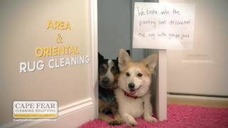 Cape Fear Solutions - Dog Shaming