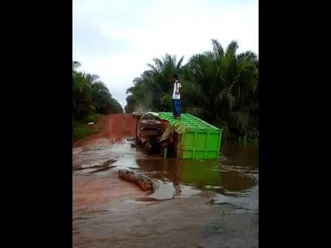 Truk Terguling di Sungai, di Perkebunan Sawit Mp3
