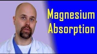 Magnesium Absorption