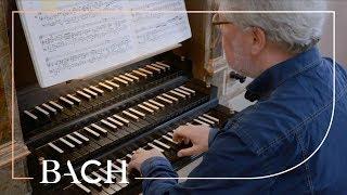 Bach - Wir glauben all an einen Gott BWV 740 - Jellema | Net...