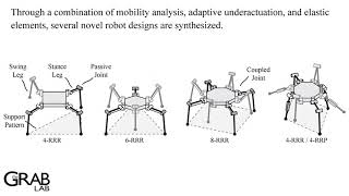 Adaptive legged robots